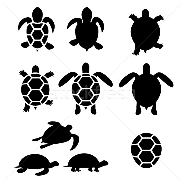 Set of turtle and tortoise silhouette Stock photo © jiaking1
