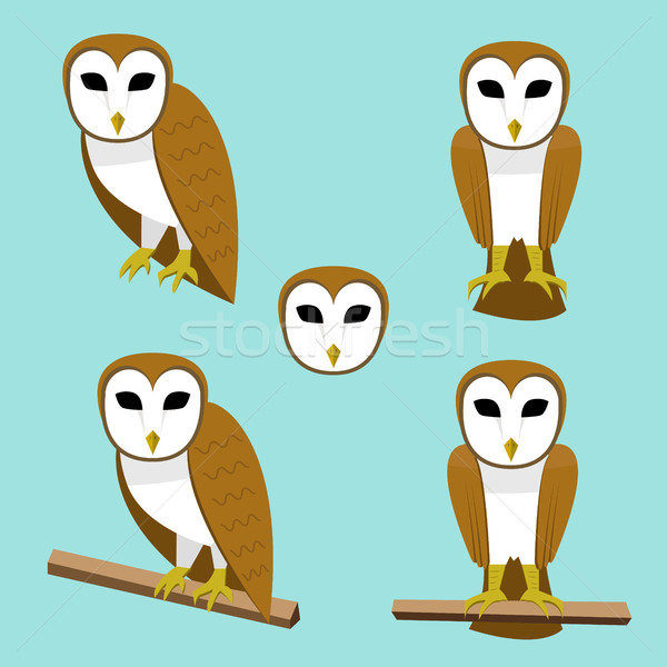 Set of Barn owl on branch in flat style Stock photo © jiaking1