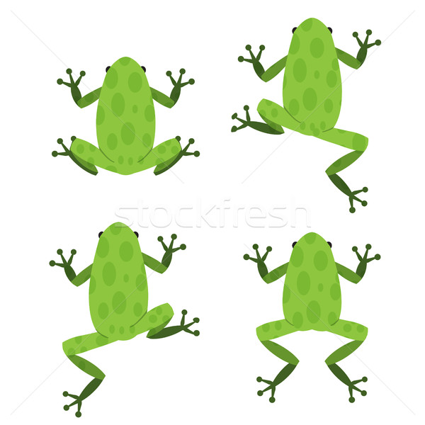 Set of green frog in flat style with pattern Stock photo © jiaking1