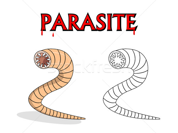 Parasitic nematode worms in vector cartoon design Stock photo © jiaking1