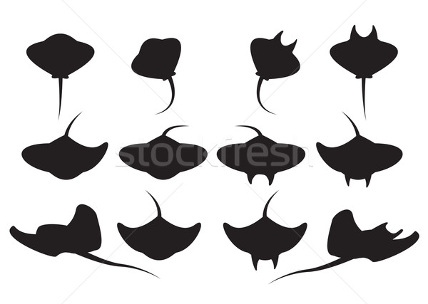Set of stingray silhouette and icons Stock photo © jiaking1