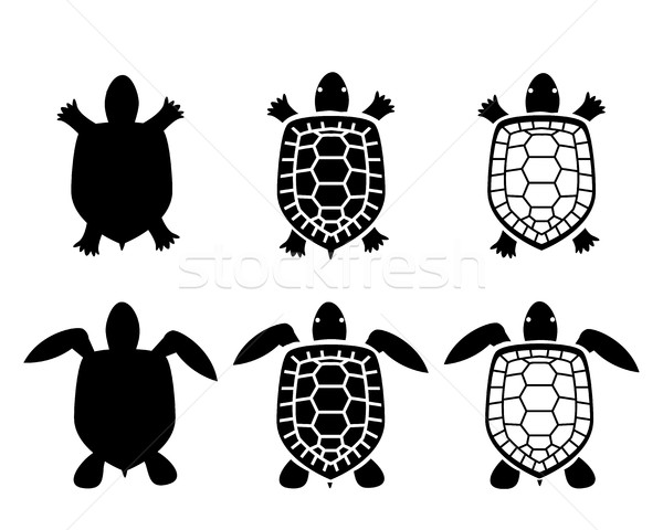 Set of turtle and tortoise icons,top view Stock photo © jiaking1