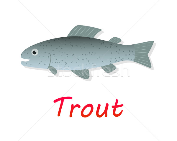 Fresh Trout fish in flat style, vector Stock photo © jiaking1