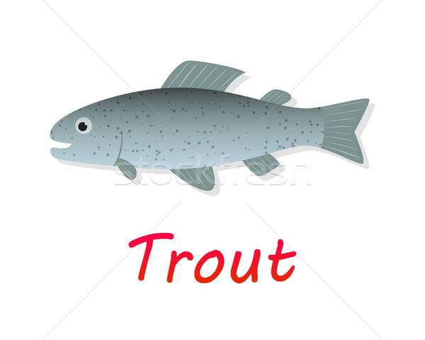 Fraîches truite poissons style vecteur design Photo stock © jiaking1