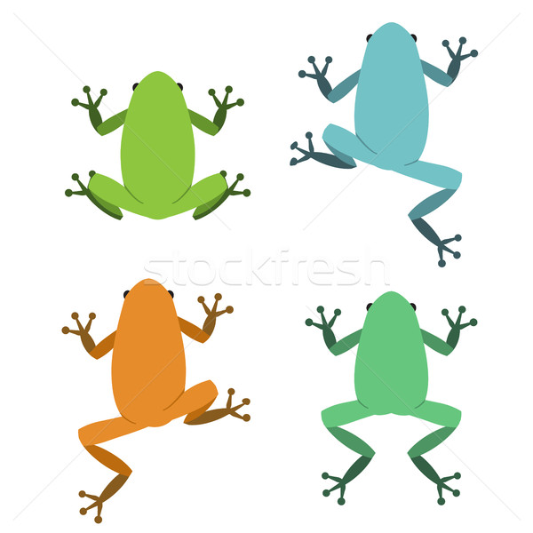 Set of frog in flat style, vector Stock photo © jiaking1