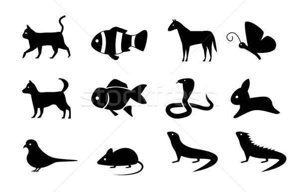 Foto stock: Conjunto · animal · ícones · silhueta · estilo · vetor