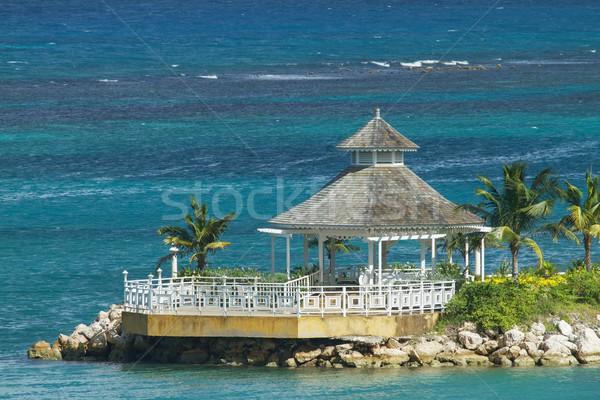 Güzel yalnız okyanus renk yeşil avuç içi Stok fotoğraf © jirivondrous