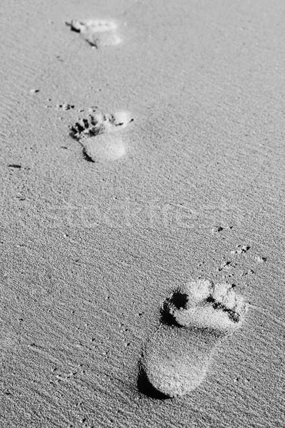 Foot prints in the sand Stock photo © jirivondrous