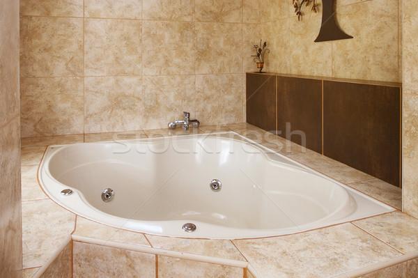 Angolo vasca da bagno decorazione bagno interni muro Foto d'archivio © jirivondrous