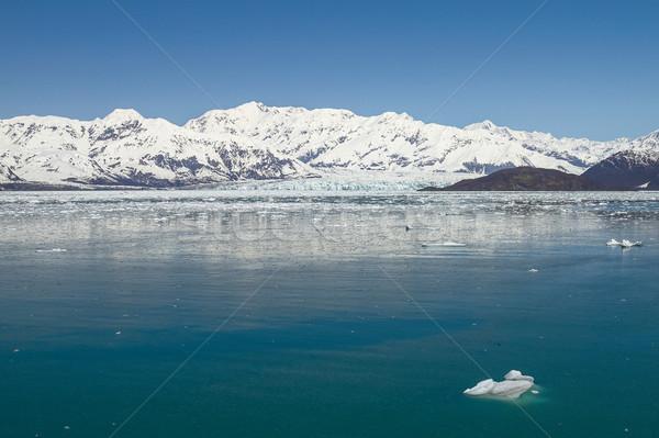 Gleccser víz szépség jég kék utazás Stock fotó © jirivondrous