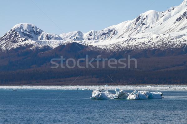 Icebergue flutuante mar fechar geleira água Foto stock © jirivondrous