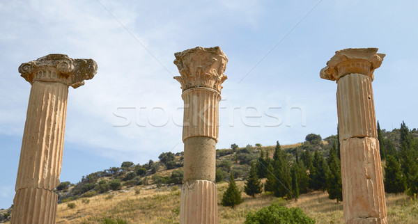 Ancient Ruins and Remains in Ephesus Turkey Stock photo © jirivondrous