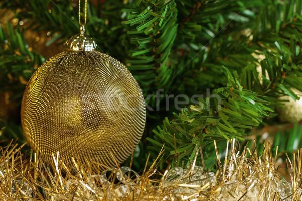 подробность украшение рождественская елка золото цепь Сток-фото © jirivondrous