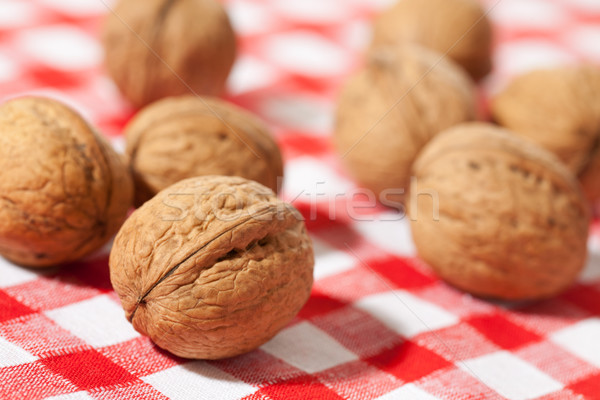 walnuts on picnic tablecloth Stock photo © jirkaejc