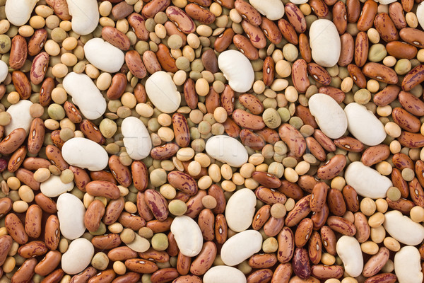 mixed legumes Stock photo © jirkaejc