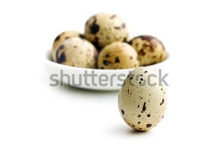 Quail egg clip art