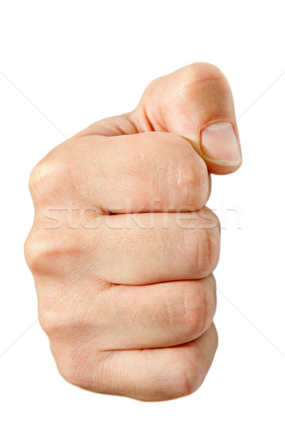 fist Stock photo © jirkaejc