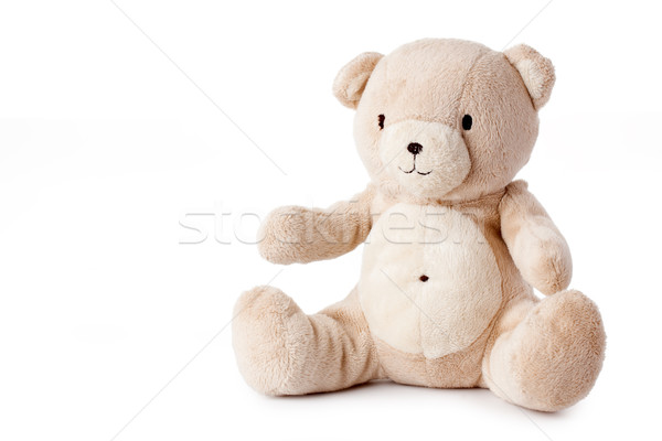 teddy bear Stock photo © jirkaejc