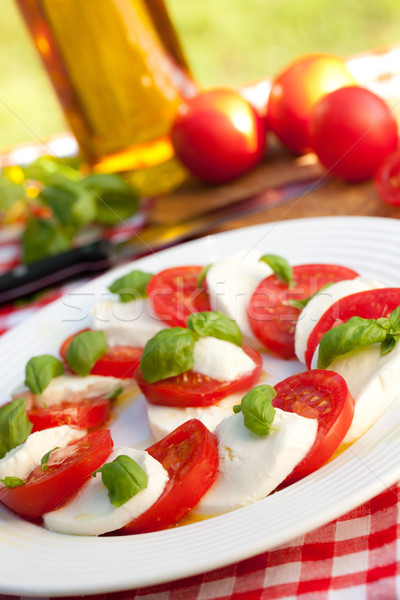 Salade caprese blanche plaque photo coup laisse Photo stock © jirkaejc