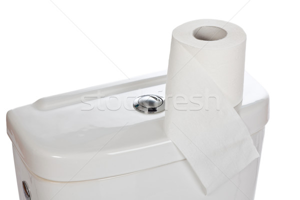 Carta igienica ceramica WC carta salute clean Foto d'archivio © jirkaejc