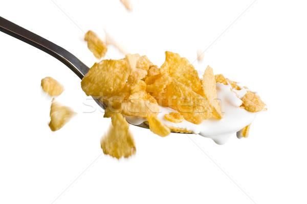 falling cornflakes on the spoon with milk  Stock photo © jirkaejc