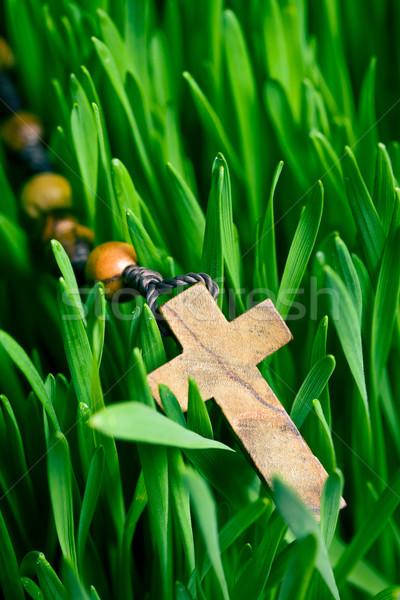 Rozenkrans kralen groene gazon natuur tuin Stockfoto © jirkaejc