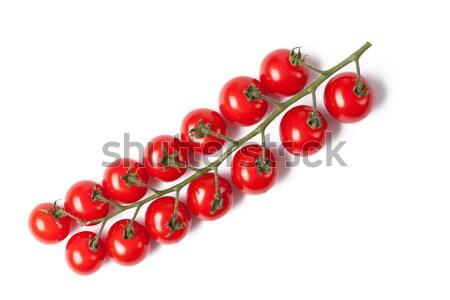 Pomidorki biały żywności ogród tle czerwony Zdjęcia stock © jirkaejc