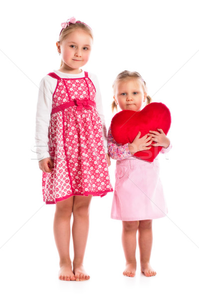 two sisters with heart Stock photo © jirkaejc