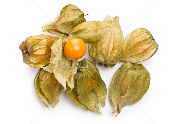 physalis fruit Stock photo © jirkaejc