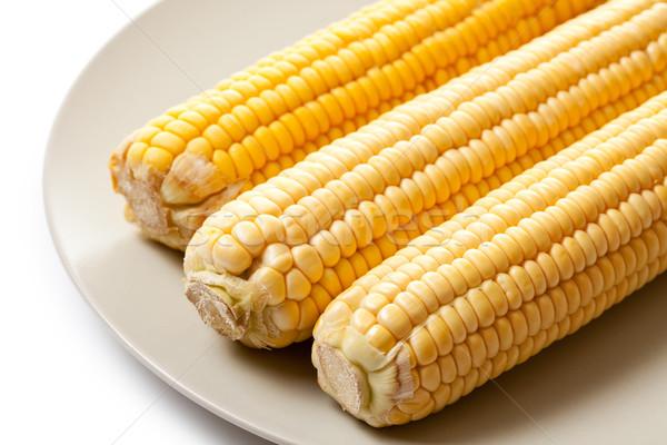 Sarı mısır fotoğraf atış gıda yaprak Stok fotoğraf © jirkaejc