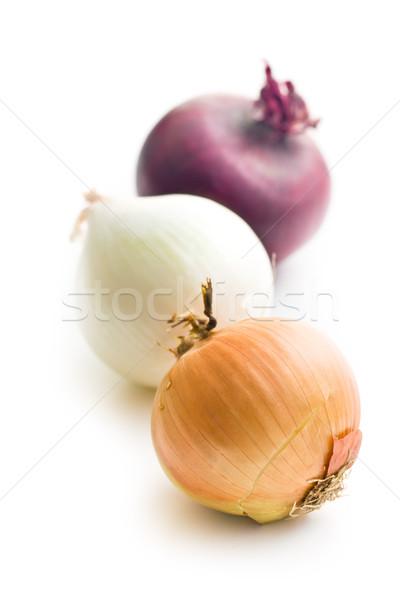 various onions Stock photo © jirkaejc