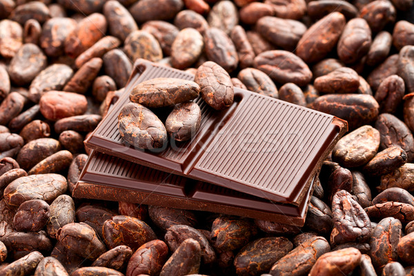 chocolate and cocoa beans Stock photo © jirkaejc