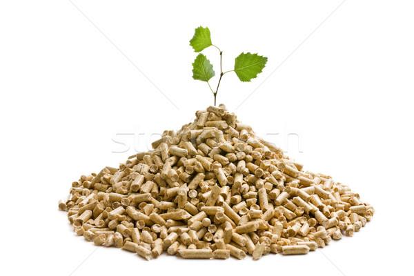 the wooden pellets  Stock photo © jirkaejc