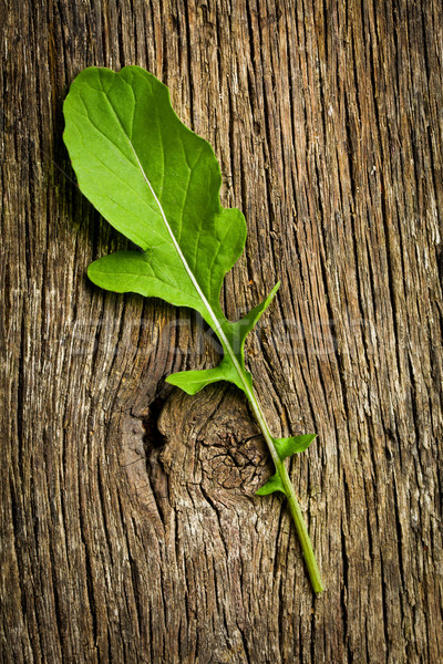 fresh arugula leaf Stock photo © jirkaejc