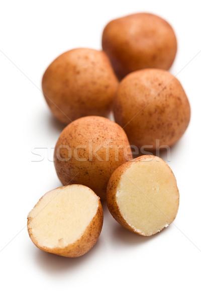 marzipan balls Stock photo © jirkaejc