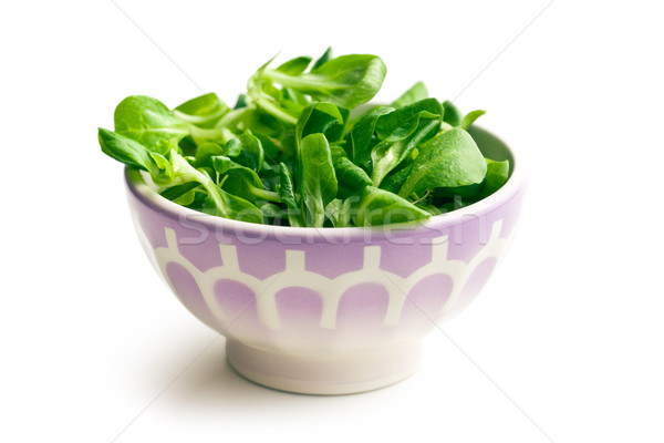 Maíz ensalada lechuga cerámica tazón grupo Foto stock © jirkaejc