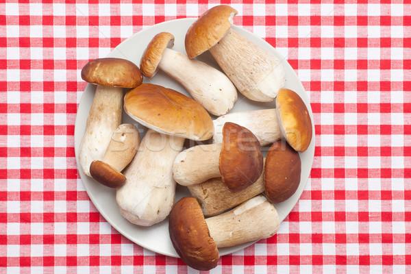 fresh  mushrooms Stock photo © jirkaejc