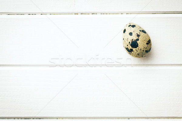 Quail egg Stock photo © jirkaejc