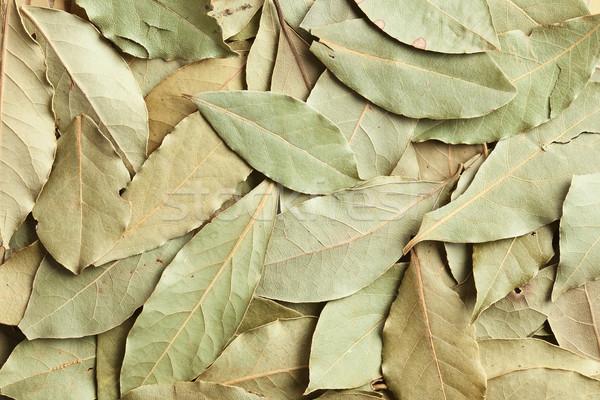 dry bay leaves background Stock photo © jirkaejc
