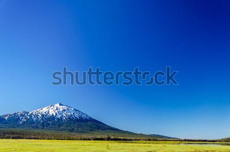 Mount Bachelor and Blue Sky Stock photo © jkraft5