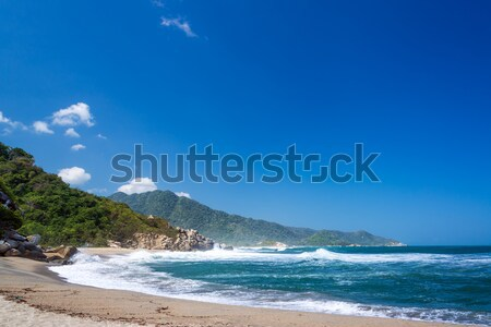 Canaveral Beach Stock photo © jkraft5