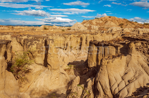Desolate Desert Canyon Stock photo © jkraft5