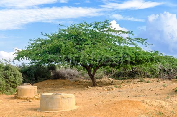 砂漠 地域 コロンビア 中古 水 ストックフォト © jkraft5