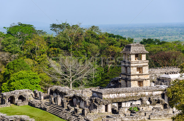 Palenque Palace Stock photo © jkraft5