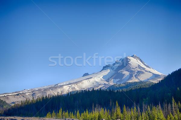 Mt. Hood South Side Stock photo © jkraft5