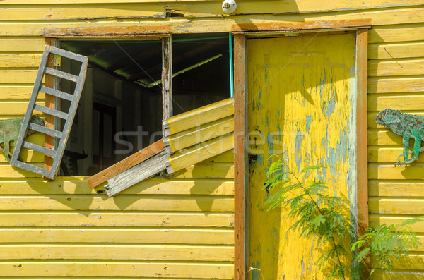 Dilapidated Yellow Building Stock photo © jkraft5