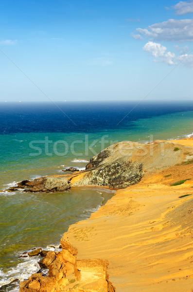 Drogen woestijn kustlijn caribbean zee Stockfoto © jkraft5