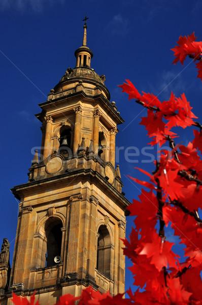 Bogotá katedrális karácsony díszítések Colombia épület Stock fotó © jkraft5