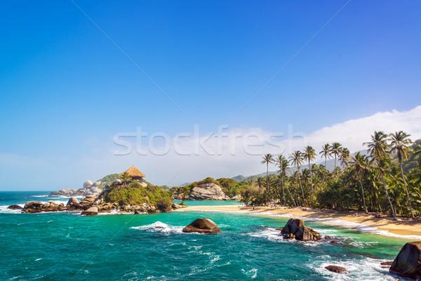 Stok fotoğraf: Güzel · plaj · palmiye · ağaçları · mavi · caribbean · su