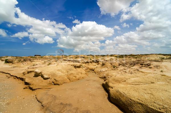 Száraz sivatag tájkép terméketlen LA természet Stock fotó © jkraft5